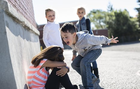 10 Ways to Help Reduce Bullying in Schools | CPI