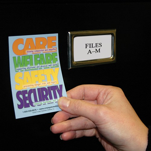 Care, Welfare, Safety, and Security Magnet