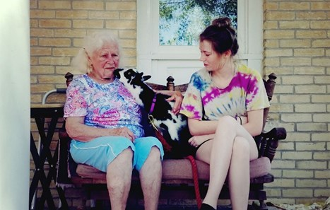 Adventures in Animal-Assisted Memory Care